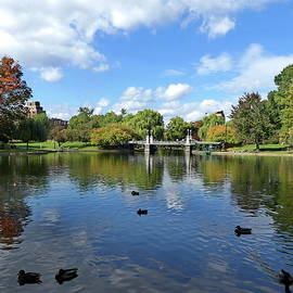 Boston Public Garden by Lyuba Filatova
