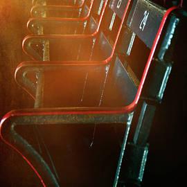 Boston Red Sox Fenway Park Seats by Joann Vitali