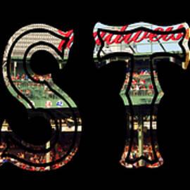 Joann Vitali - Boston Red Sox Poster