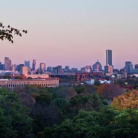 Joann Vitali - Boston Skyline From Mount Auburn Cemetery