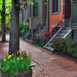 Joann Vitali - Boston South End Row Houses