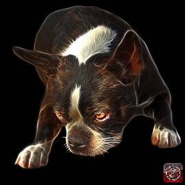 Boston Terrier Art - 8384 - Bb by James Ahn