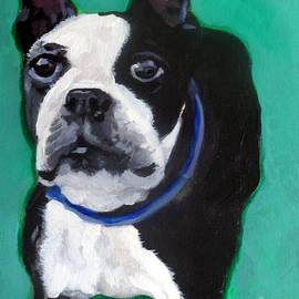 Boston Terrier by Jeanne Russell