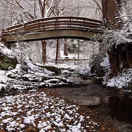 Carol R Montoya - Botanical Gardens Asheville North Carolina