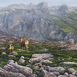 Aaron Spong - Boulderfield Bucks