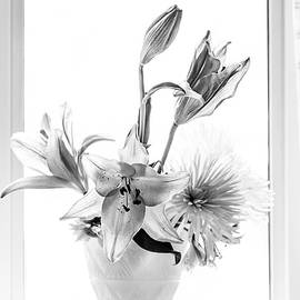 Maggie Terlecki - Bouquet in Black and White