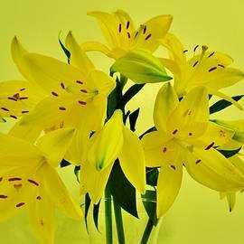 Eileen Brymer - Bouquet of Lillies