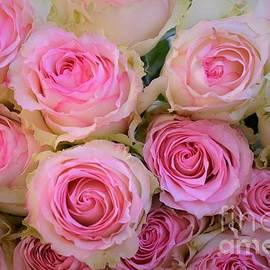Deb Halloran - Bouquet of Roses