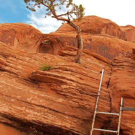 Denise Strahm - Bowtie Arch, Moab, Utah