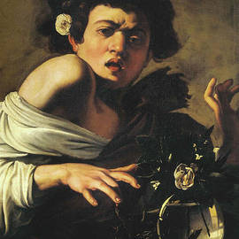 Boy Bitten By A Lizard, 1596 To 97 by Caravaggio