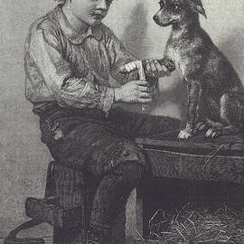 Boy mends dog