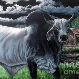 Brahma Bull- Okeechobee Moonlight by Daniel Butler