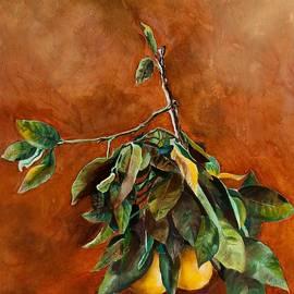 Branch of Grapefruit by Jolante Hesse