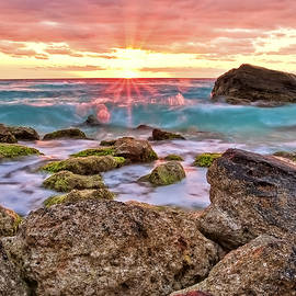 Breaking Dawn by Marcia Colelli