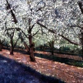 RC deWinter - Bridal Veil Trail