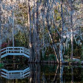 Bridge And Statue At Magnolia Plantation Gardens by Susie Weaver