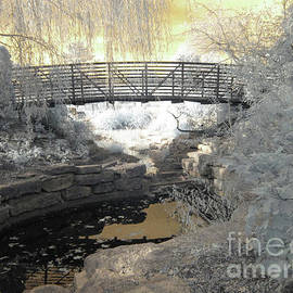 Bridge In Shades Of Infrared by Crystal Nederman