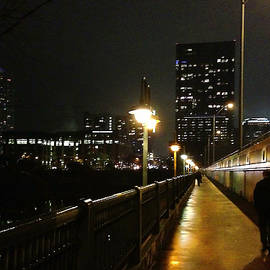 Felipe Adan Lerma - Bridge into the Night