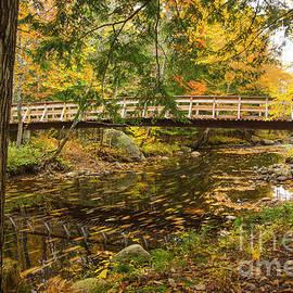 Bridge Over a Small Stream by Alana Ranney