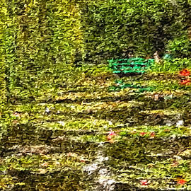 Mario Carini - Bridge Over Lily Pond
