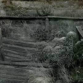 Sue McGlothlin - Bridge to nowhere