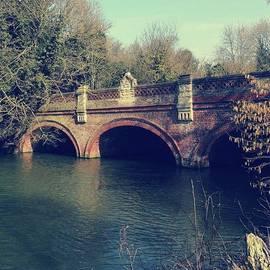John S - Bridge. #bridge #jephsongardens