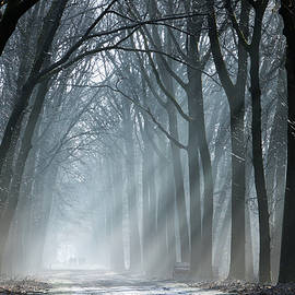 Martin Podt - Brighten up the darkness