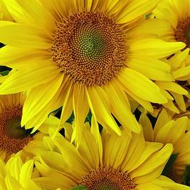 Brighten You Day by Bruce Bley