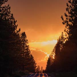 Tran Boelsterli - Brighten your path