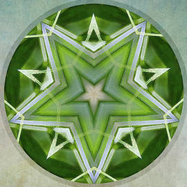 Julie Weber - Brilliant Playground Mandala -