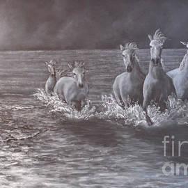 David Swope - Bring on the Dancing Horses
