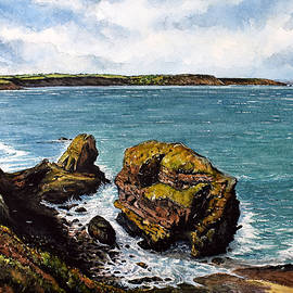 Broad Haven by Andrew Read