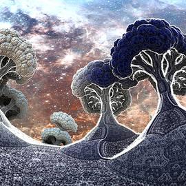 Broccoli Planet in Winter by Grant Osborne