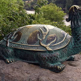 Bronze Turtle Dragon Sculpture by Sally Weigand