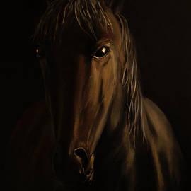 Radoslav Nedelchev - Brown Horse