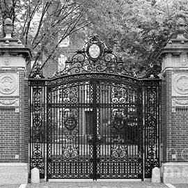 Brown University Van Wickle Gates by University Icons