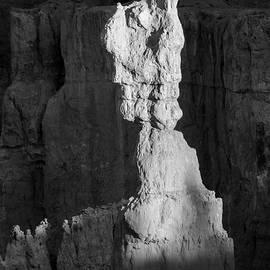 Bryce Canyon Np Vi Bw by David Gordon