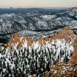 Bryce Canyon Series #17 by Patti Deters