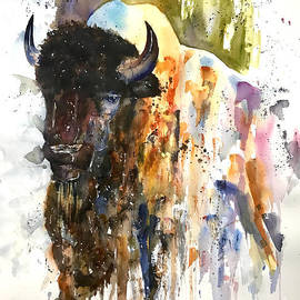 Raelene Vining - Buffalo in abstract