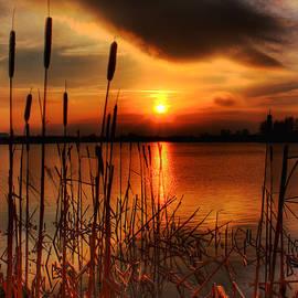 Bullrush Sunset by Kim Shatwell-Irishphotographer