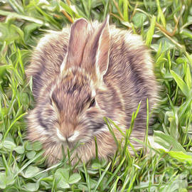 Kerri Farley - Bunny in the Clover