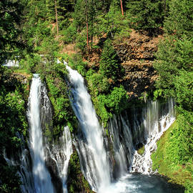 James Eddy - Burney Falls