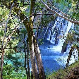 Burney Falls Trailside II by FlyingFish Foto