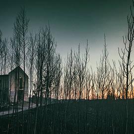 Burnt Landscape by Carlos Caetano