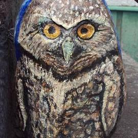 Burrowing Owl on Stairs by Abelone Petersen