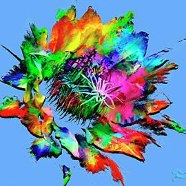 Burst of Color by David Millenheft
