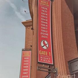 Luther Fine Art - Busch Stadium - Cardinals Baseball