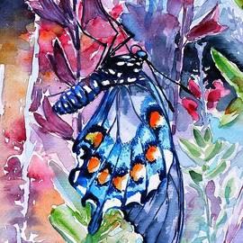 Butterfly - Kovacs Anna Brigitta