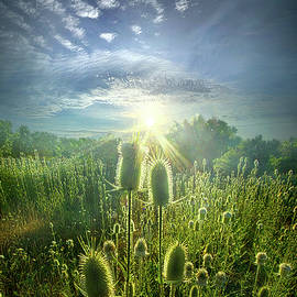 By Virtue of its Own Existence - Phil Koch