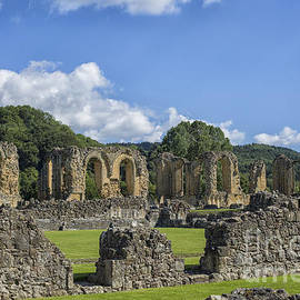 Byland Abbey in Yorkshire by Patricia Hofmeester